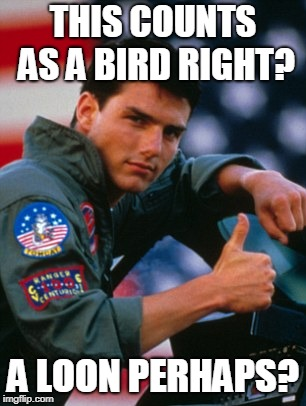 top gun | THIS COUNTS AS A BIRD RIGHT? A LOON PERHAPS? | image tagged in top gun | made w/ Imgflip meme maker