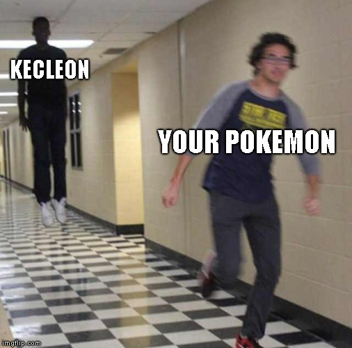 Kecelon in mystery dungeon be like | KECLEON YOUR POKEMON | image tagged in floating boy chasing running boy,pokemon | made w/ Imgflip meme maker
