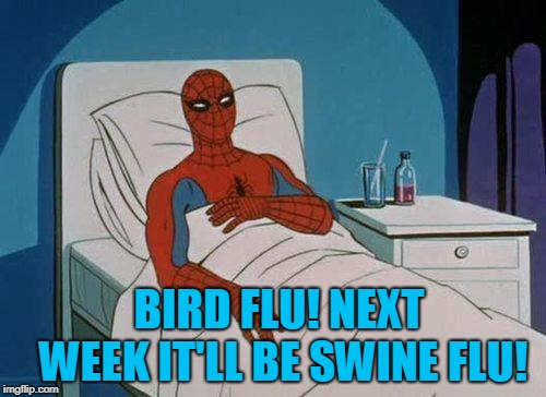 Spiderman Hospital Meme | BIRD FLU! NEXT WEEK IT'LL BE SWINE FLU! | image tagged in memes,spiderman hospital,spiderman | made w/ Imgflip meme maker