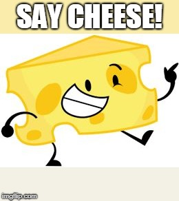 That's pretty cheesy! | SAY CHEESE! | image tagged in that's pretty cheesy | made w/ Imgflip meme maker