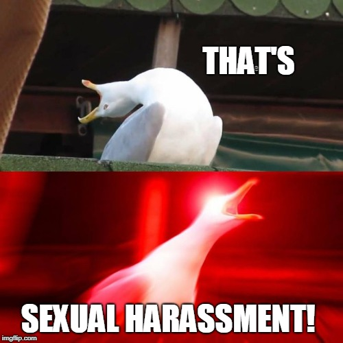 Inhale bird yell | THAT'S SEXUAL HARASSMENT! | image tagged in inhale bird yell | made w/ Imgflip meme maker
