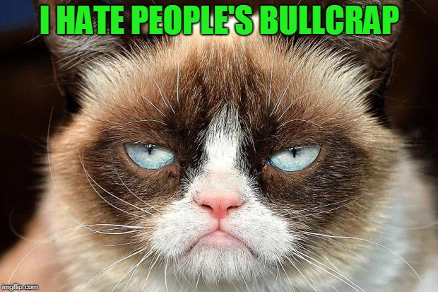Grumpy Cat Not Amused Meme | I HATE PEOPLE'S BULLCRAP | image tagged in memes,grumpy cat not amused,grumpy cat | made w/ Imgflip meme maker