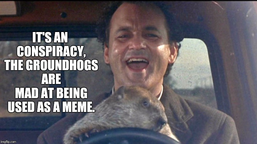 IT'S AN CONSPIRACY, THE GROUNDHOGS ARE MAD AT BEING USED AS A MEME. | made w/ Imgflip meme maker