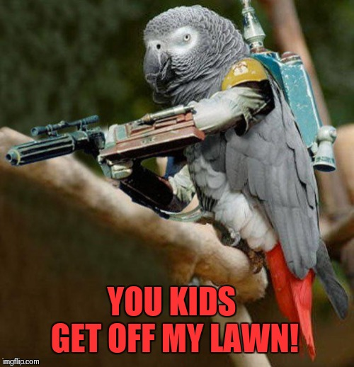 Bird Weekend February 1-3, a moemeobro, claybourne, and 1forpiece event | YOU KIDS GET OFF MY LAWN! | image tagged in memes,get off my lawn,bird weekend,clint eastwood,parrot | made w/ Imgflip meme maker
