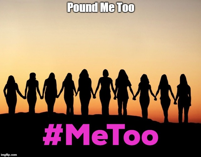 MeToo | Pound Me Too | image tagged in metoo | made w/ Imgflip meme maker