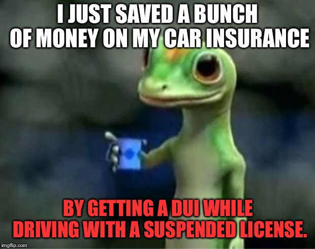 Hey, more money left over for Uber | I JUST SAVED A BUNCH OF MONEY ON MY CAR INSURANCE BY GETTING A DUI WHILE DRIVING WITH A SUSPENDED LICENSE. | image tagged in geico gecko,memes,drunk driving,dui,car,money | made w/ Imgflip meme maker