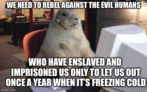 Working Groundhog | WE NEED TO REBEL AGAINST THE EVIL HUMANS WHO HAVE ENSLAVED AND IMPRISONED US ONLY TO LET US OUT ONCE A YEAR WHEN IT'S FREEZING COLD | image tagged in working groundhog | made w/ Imgflip meme maker