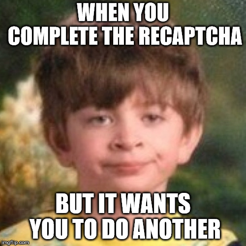 Annoyed face |  WHEN YOU COMPLETE THE RECAPTCHA; BUT IT WANTS YOU TO DO ANOTHER | image tagged in annoyed face,memes | made w/ Imgflip meme maker