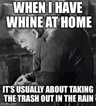 WHEN I HAVE WHINE AT HOME IT'S USUALLY ABOUT TAKING THE TRASH OUT IN THE RAIN | made w/ Imgflip meme maker