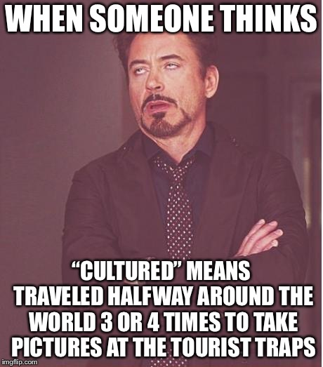 "Face You Make Robert Downey Jr | WHEN SOMEONE THINKS ""CULTURED"" MEANS TRAVELED HALFWAY AROUND THE WORLD 3 OR 4 TIMES TO TAKE PICTURES AT THE TOURIST TRAPS 