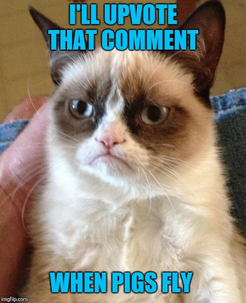 Grumpy Cat Meme | I'LL UPVOTE THAT COMMENT WHEN PIGS FLY | image tagged in memes,grumpy cat | made w/ Imgflip meme maker