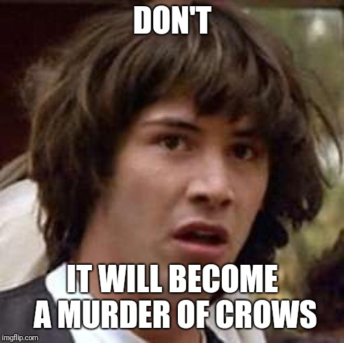 Conspiracy Keanu Meme | DON'T IT WILL BECOME A MURDER OF CROWS | image tagged in memes,conspiracy keanu | made w/ Imgflip meme maker