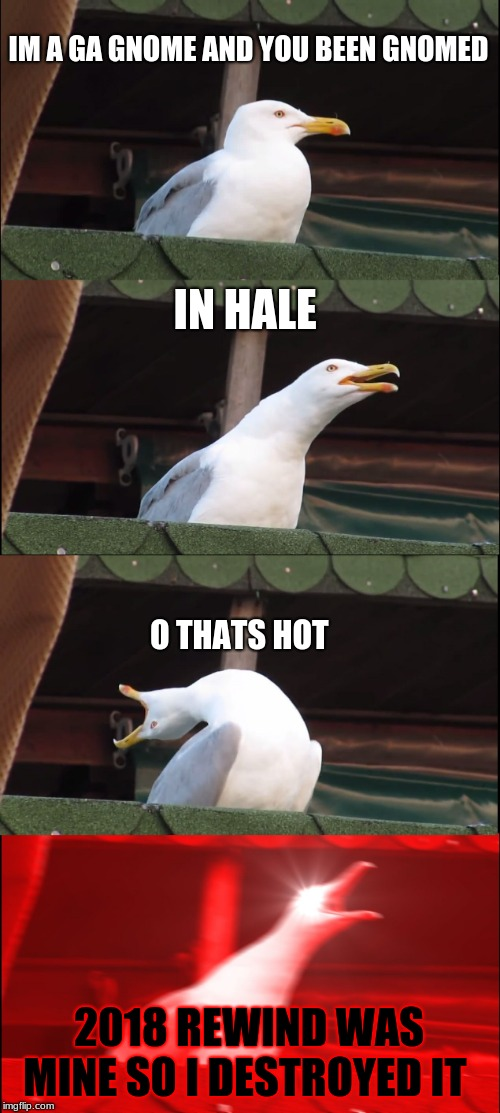Inhaling Seagull | IM A GA GNOME AND YOU BEEN GNOMED IN HALE O THATS HOT 2018 REWIND WAS MINE SO I DESTROYED IT | image tagged in memes,inhaling seagull | made w/ Imgflip meme maker