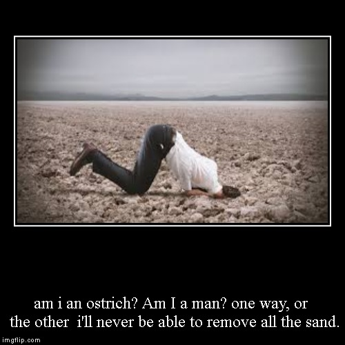 am i an ostrich? Am I a man? one way, or  the other  i'll never be able to remove all the sand. | image tagged in funny,demotivationals | made w/ Imgflip demotivational maker