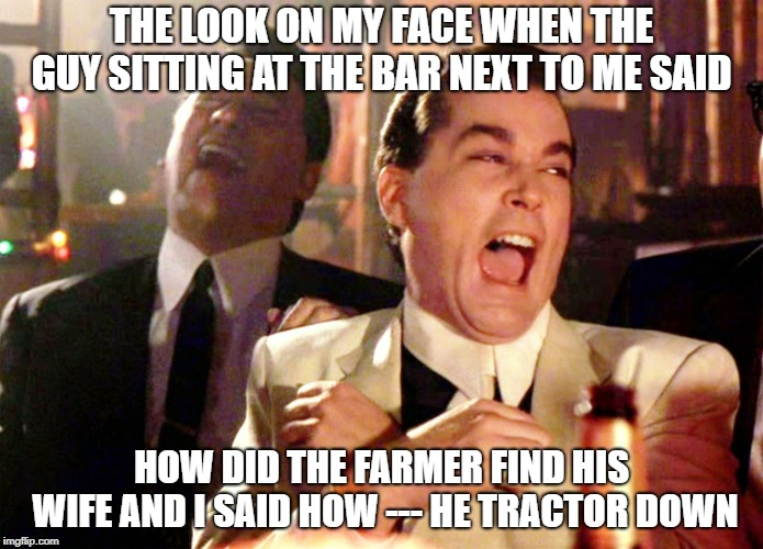 Good Fellas Hilarious | THE LOOK ON MY FACE WHEN THE GUY SITTING AT THE BAR NEXT TO ME SAID HOW DID THE FARMER FIND HIS WIFE AND I SAID HOW --- HE TRACTOR DOWN | image tagged in memes,good fellas hilarious | made w/ Imgflip meme maker