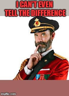 Hmm Captain Obvious  | I CAN'T EVEN TELL THE DIFFERENCE | image tagged in hmm captain obvious | made w/ Imgflip meme maker