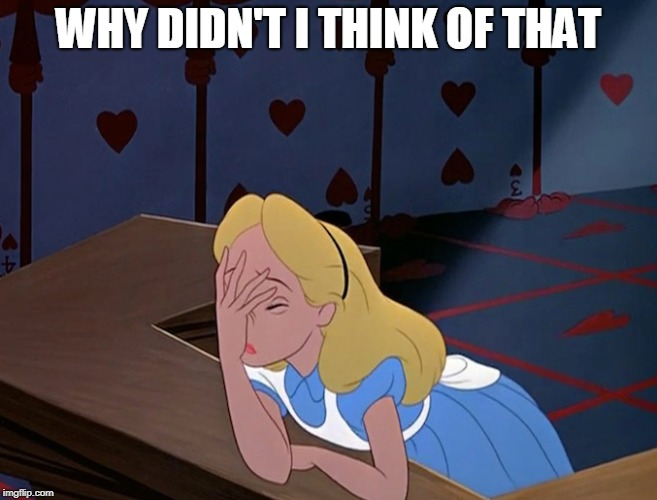 Alice in Wonderland Face Palm Facepalm | WHY DIDN'T I THINK OF THAT | image tagged in alice in wonderland face palm facepalm | made w/ Imgflip meme maker
