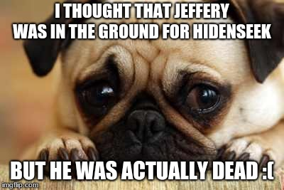 Sad Dog | I THOUGHT THAT JEFFERY WAS IN THE GROUND FOR HIDENSEEK BUT HE WAS ACTUALLY DEAD :( | image tagged in sad dog | made w/ Imgflip meme maker
