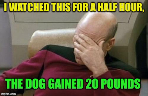 Captain Picard Facepalm Meme | I WATCHED THIS FOR A HALF HOUR, THE DOG GAINED 20 POUNDS | image tagged in memes,captain picard facepalm | made w/ Imgflip meme maker