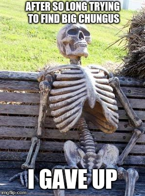 Waiting Skeleton Meme |  AFTER SO LONG TRYING TO FIND BIG CHUNGUS; I GAVE UP | image tagged in memes,waiting skeleton | made w/ Imgflip meme maker