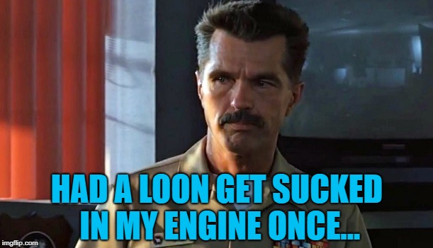 Top Gun Viper | HAD A LOON GET SUCKED IN MY ENGINE ONCE... | image tagged in top gun viper | made w/ Imgflip meme maker