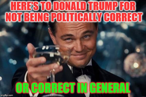 Leonardo Dicaprio Cheers | HERE'S TO DONALD TRUMP FOR NOT BEING POLITICALLY CORRECT OR CORRECT IN GENERAL | image tagged in memes,leonardo dicaprio cheers | made w/ Imgflip meme maker