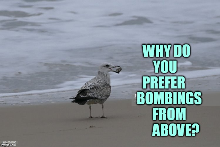 WHY DO   YOU     PREFER     BOMBINGS    FROM         ABOVE? | made w/ Imgflip meme maker
