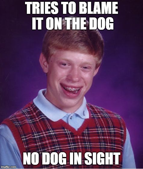 Bad Luck Brian Meme | TRIES TO BLAME IT ON THE DOG NO DOG IN SIGHT | image tagged in memes,bad luck brian | made w/ Imgflip meme maker