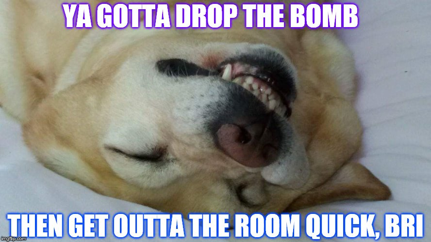 Stoned Doge | YA GOTTA DROP THE BOMB THEN GET OUTTA THE ROOM QUICK, BRI | image tagged in stoned doge | made w/ Imgflip meme maker