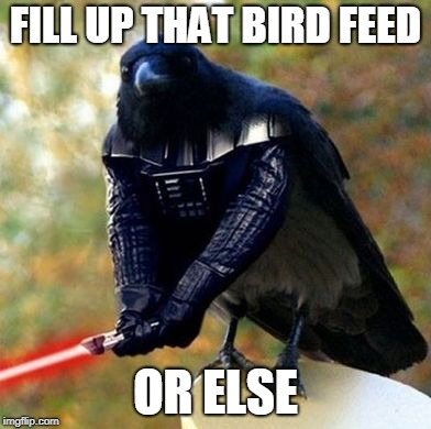 I'll cut your boat in half Bird week February 1-3  | FILL UP THAT BIRD FEED OR ELSE | image tagged in darth bird | made w/ Imgflip meme maker