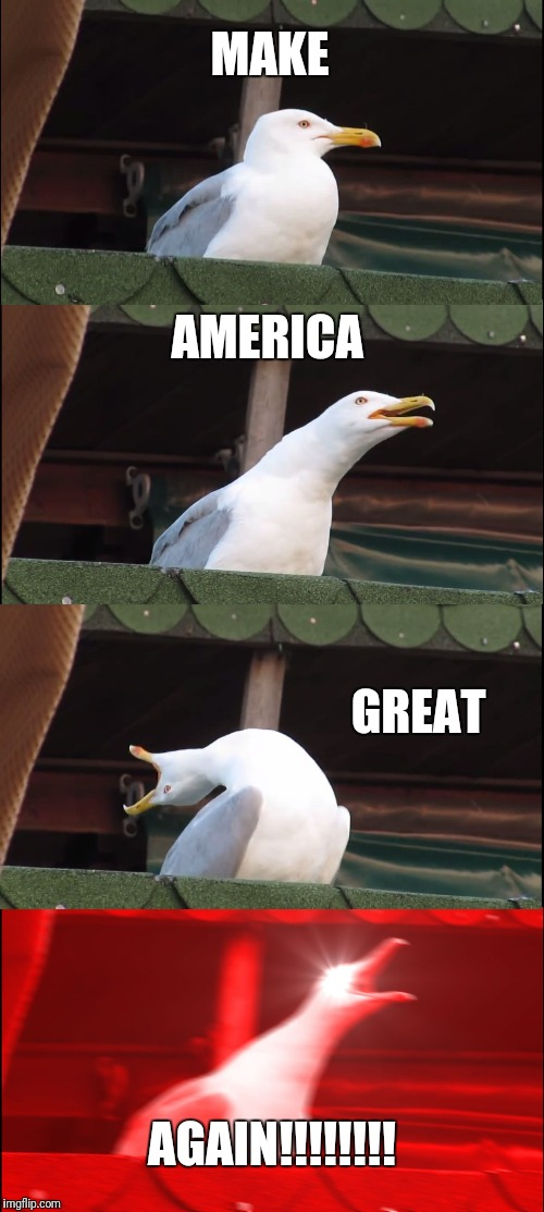 Inhaling Seagull Meme | MAKE AMERICA GREAT AGAIN!!!!!!!! | image tagged in memes,inhaling seagull | made w/ Imgflip meme maker