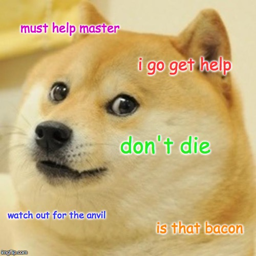 Doge Meme | must help master i go get help don't die watch out for the anvil is that bacon | image tagged in memes,doge | made w/ Imgflip meme maker