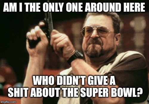Am I The Only One Around Here | AM I THE ONLY ONE AROUND HERE WHO DIDN'T GIVE A SHIT ABOUT THE SUPER BOWL? | image tagged in memes,am i the only one around here | made w/ Imgflip meme maker