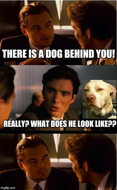 Hmmm... | THERE IS A DOG BEHIND YOU! REALLY? WHAT DOES HE LOOK LIKE?? | image tagged in memes,inception,memelord344,funny,dogs,leonardo dicaprio | made w/ Imgflip meme maker
