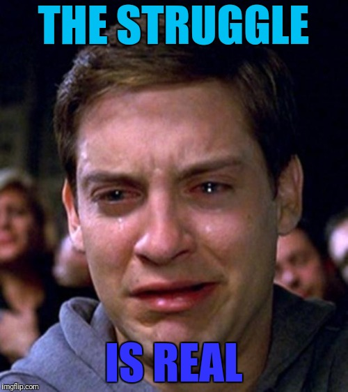 crying peter parker | THE STRUGGLE IS REAL | image tagged in crying peter parker | made w/ Imgflip meme maker