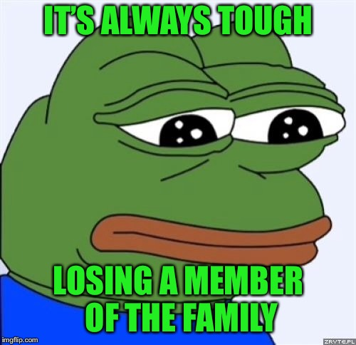 sad frog | IT'S ALWAYS TOUGH LOSING A MEMBER OF THE FAMILY | image tagged in sad frog | made w/ Imgflip meme maker