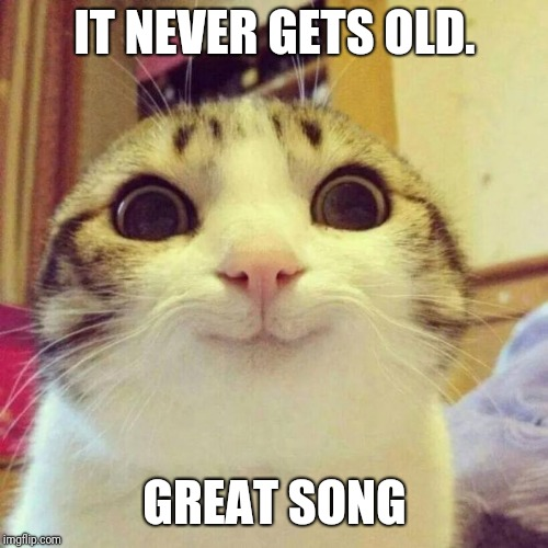 Smiling Cat Meme | IT NEVER GETS OLD. GREAT SONG | image tagged in memes,smiling cat | made w/ Imgflip meme maker