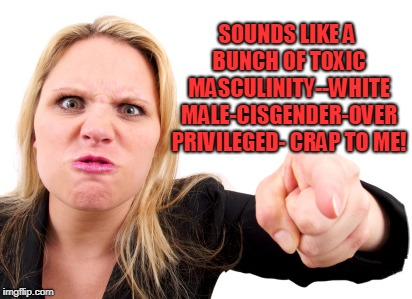 Angry Feminist | SOUNDS LIKE A BUNCH OF TOXIC MASCULINITY--WHITE MALE-CISGENDER-OVER PRIVILEGED- CRAP TO ME! | image tagged in angry feminist | made w/ Imgflip meme maker