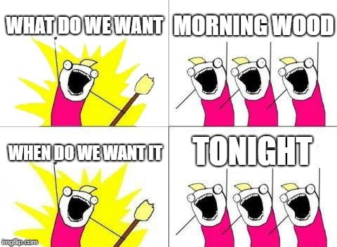 What Do We Want | WHAT DO WE WANT MORNING WOOD WHEN DO WE WANT IT TONIGHT | image tagged in memes,what do we want | made w/ Imgflip meme maker