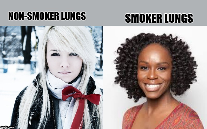 Smoker vs non-smoker | NON-SMOKER LUNGS SMOKER LUNGS | image tagged in smokers,white people,black people | made w/ Imgflip meme maker