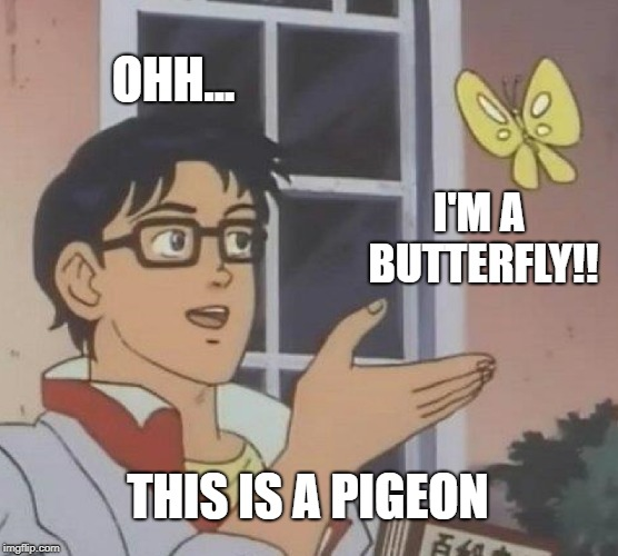 Is This A Pigeon Meme | OHH... I'M A BUTTERFLY!! THIS IS A PIGEON | image tagged in memes,is this a pigeon | made w/ Imgflip meme maker