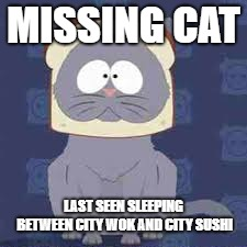 Missing Cat | MISSING CAT LAST SEEN SLEEPING BETWEEN CITY WOK AND CITY SUSHI | image tagged in mr kitty,southpark,missing,bread cat,eric cartman | made w/ Imgflip meme maker