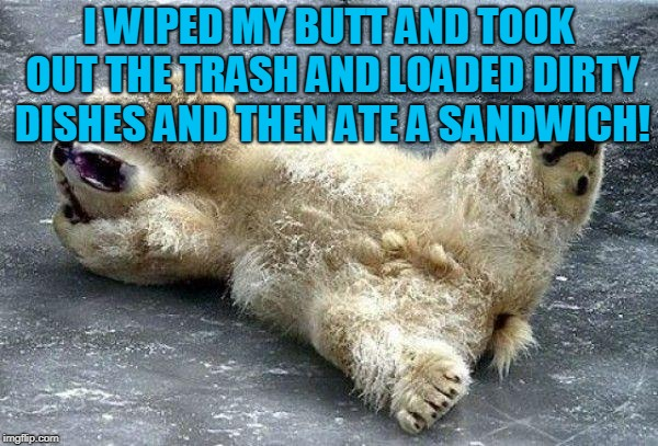 Oh nooo polar bear | I WIPED MY BUTT AND TOOK OUT THE TRASH AND LOADED DIRTY DISHES AND THEN ATE A SANDWICH! | image tagged in oh nooo polar bear | made w/ Imgflip meme maker
