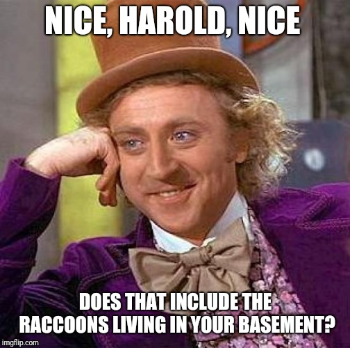 Creepy Condescending Wonka Meme | NICE, HAROLD, NICE DOES THAT INCLUDE THE RACCOONS LIVING IN YOUR BASEMENT? | image tagged in memes,creepy condescending wonka | made w/ Imgflip meme maker
