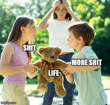 kids fighting |  SHIT; MORE SHIT; LIFE | image tagged in kids fighting | made w/ Imgflip meme maker