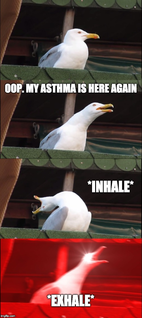 Inhaling Seagull Meme | OOP. MY ASTHMA IS HERE AGAIN *INHALE* *EXHALE* | image tagged in memes,inhaling seagull | made w/ Imgflip meme maker