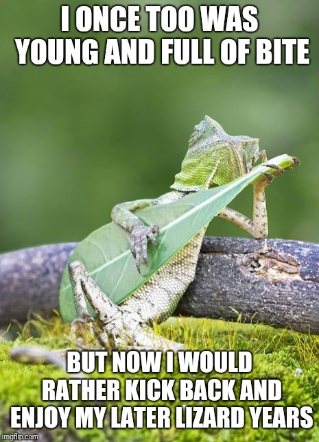 Lizzard playing leaf | I ONCE TOO WAS YOUNG AND FULL OF BITE BUT NOW I WOULD RATHER KICK BACK AND ENJOY MY LATER LIZARD YEARS | image tagged in lizzard playing leaf | made w/ Imgflip meme maker