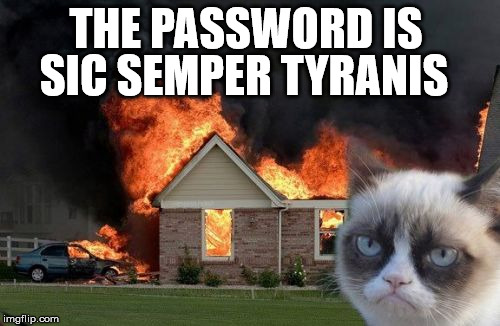THE PASSWORD IS SIC SEMPER TYRANIS | image tagged in memes,burn kitty,grumpy cat | made w/ Imgflip meme maker