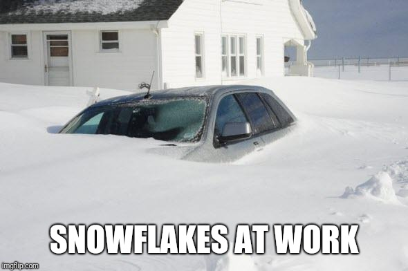 SNOWFLAKES AT WORK | image tagged in snow storm large | made w/ Imgflip meme maker