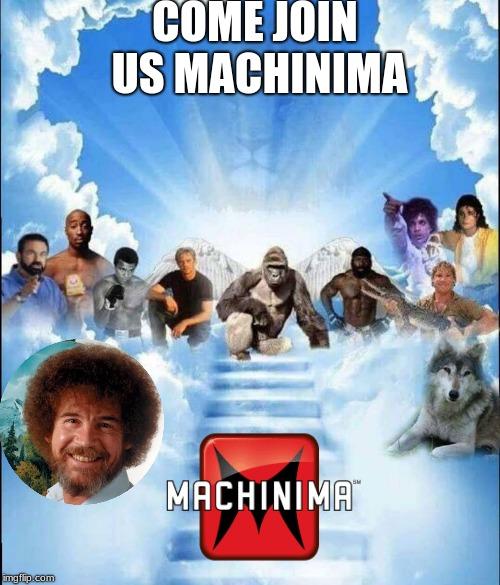 meme heaven